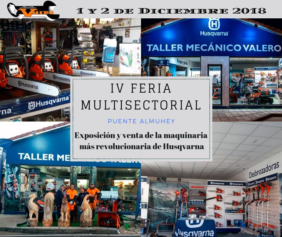 Feria Multisectorial Comarca de Puente Almuhey